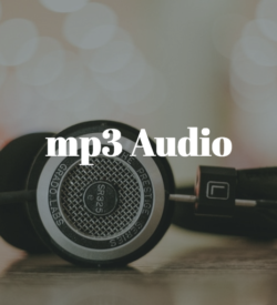 mp3 (Audio)